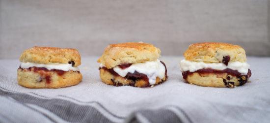 Down-time Cranberry Cream Scones