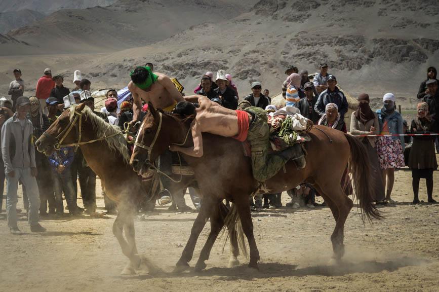 horse back tug